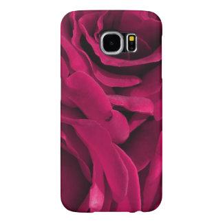Photo florale de roses roses fuchsia de velours