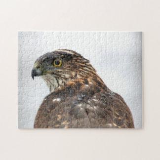 Photo haute étroite de faucon puzzle