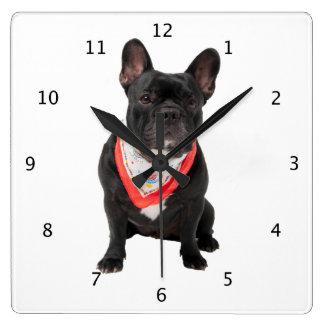 Photo mignonne de chien de bouledogue français bel horloge carrée