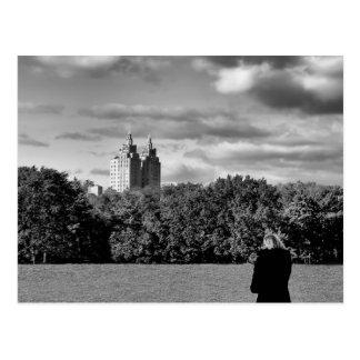 Photo noire et blanche de paysage de Central Park Carte Postale