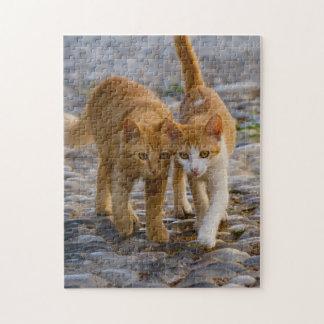 Photo pierreuse de chemin de chats d'amis câlins puzzle