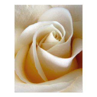 Photo rose de mariage de crème prospectus avec motif