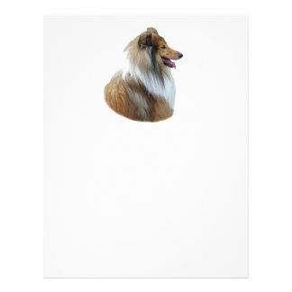 Photo rugueuse de portrait de chien de colley prospectus 21,6 cm x 24,94 cm