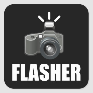 Photographe d'appareil-photo de clignoteur sticker carré