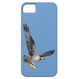 Photographie de faune de balbuzard et de poissons iPhone 5 case