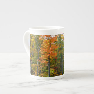 Photographie de nature d'automne d'arbres d'érable mug