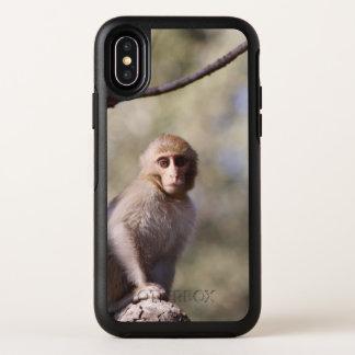 Photographie mignonne de singe de bébé