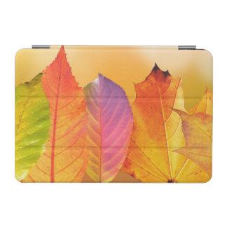 Photographie moderne colorée de beaux-arts de protection iPad mini