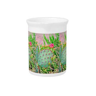 Pichet Cactus avec le broc rose de porcelaine de fleur