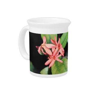 Pichet Fleur de corail exotique tropicale, cruche de broc
