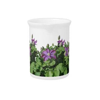Pichet Photographie florale de fleur de jardin de fleurs