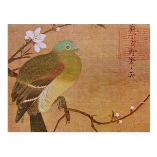 Pigeon sur une branche de pêche carte postale