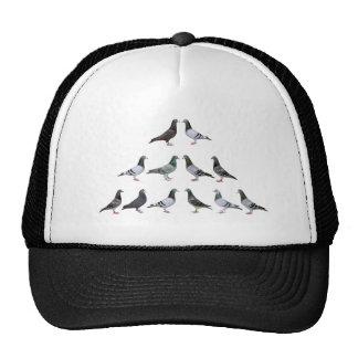 Pigeons voyageur champions casquette trucker