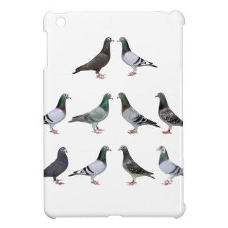 Pigeons voyageur champions coques pour iPad mini