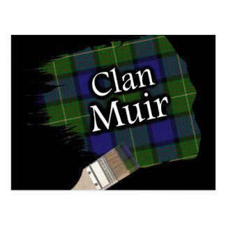 Pinceau écossais de tartan de Muir de clan Carte Postale