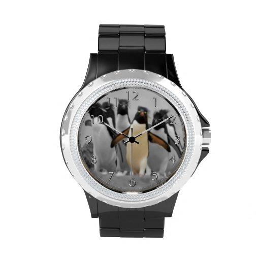 Pingouins de Rockhopper Montres