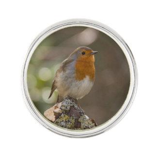 Pin's Robin
