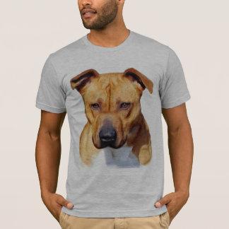 Pitbull a adapté le T-shirt