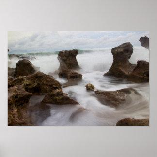 Plage de corail de parc de crique, la Floride Poster