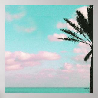 Plage tropicale, vue d'océan, nuages roses, paume