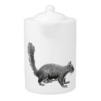 Plaine d'écureuil