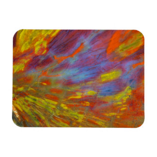 Plan rapproché coloré en bois Petrified Magnet Flexible