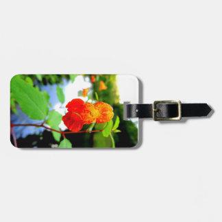 Plan rapproché de fleur de Jewelweed Étiquette À Bagage