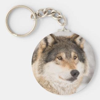 Plan rapproché de visage de loup porte-clé rond