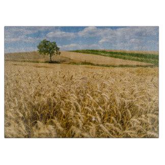 Planche À Découper Arbre dans le paysage de champ de blé