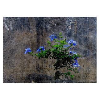 Planche À Découper Fleur bleue de plumbago