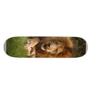 Planche à roulettes africaine du lion 003