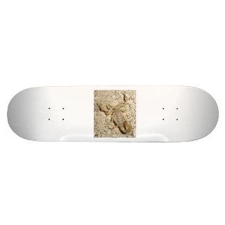 Planche à roulettes avec le scorpion skateboard 19,7 cm