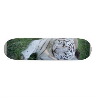 Planche à roulettes blanche du tigre 021