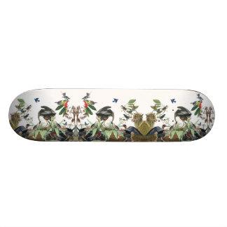 Planche à roulettes d'animaux de faune d'oiseaux skateboard 20,6 cm