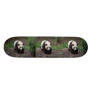 Planche à roulettes de photo de panda géant plateaux de skateboards customisés