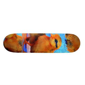 Planche à roulettes de Poussin-Un-Dee-Lumière - pe Skateboards Personnalisés
