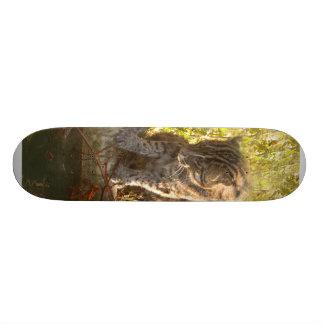 Planche à roulettes FishingCat010