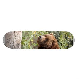 planche à roulettes grizzly-bear-001
