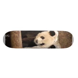 planche à roulettes panda100
