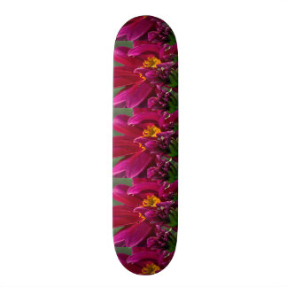 Planches À Roulettes Customisées Type de plate-forme de Borarding de patin :