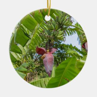 Plantation de banane en île blême de Sok Kwu Lamma Ornement Rond En Céramique