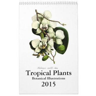 Plantes tropicales 2015 calendriers muraux