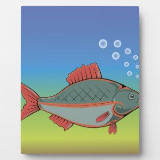 Plaque Photo 17fish