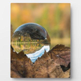 Plaque Photo Chute dans une boule