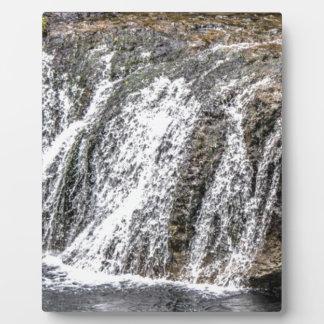 Plaque Photo chutes fraîches dans la forêt