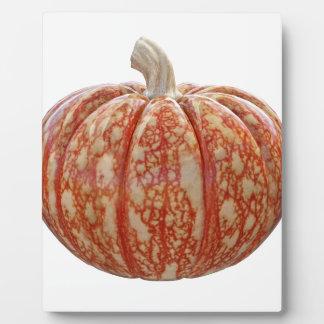 Plaque Photo Citrouille coloré multi