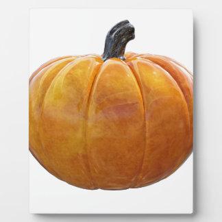 Plaque Photo Citrouille orange classique