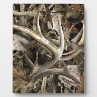 Plaque Photo Crânes de cerfs communs de Camo