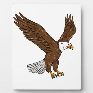 Plaque Photo Eagle chauve pilotant le dessin