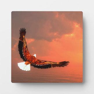 Plaque Photo Eagle volant - 3D rendent